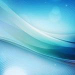 Le TULSI - Ses effets antioxydants et protecteurs sur le foie