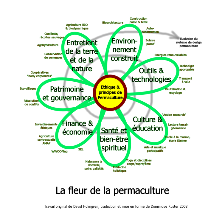 permaculture_flower_french